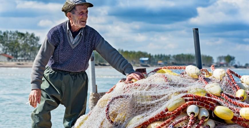 Principales métodos de pesca para la sardina